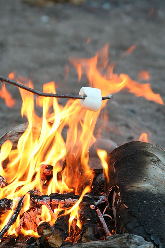 Roasting Marshmallows (photo by ninahale on Flickr)