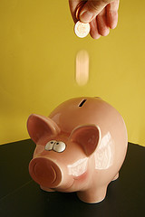 Do You Have Enough or Too Much in Your Piggy Bank Emergency Fund?